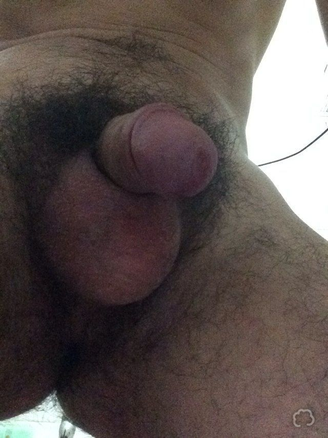 Hairy Hunk Big Cock - Hot Girls Wallpaper